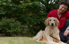 FOCUS: Truth ministry has special partner in 72-pound golden retriever