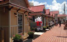 7/21: Single-payer health care; Auburn's shops; James Camak