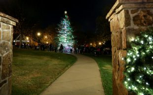 11/21: Norcross celebration; On tax reform; Tax hoax; more